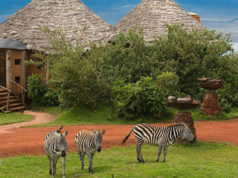 arusha best hotels