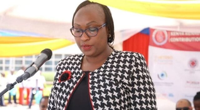 Ann Kananu Mwenda Biography, Age, Career, Family, Husband Net Worth