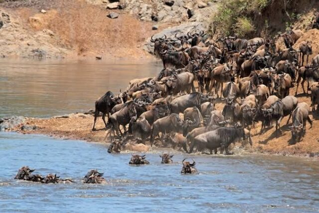 Top 10 Tourist Attraction Sites in Kenya 2021