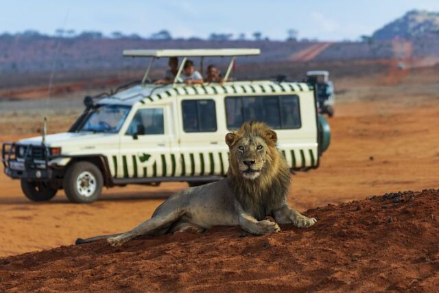 Best Travel Agencies in Kenya, Travel Deals and Packages