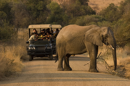 Best Travel Agencies in Nairobi, Travel deals and Packages