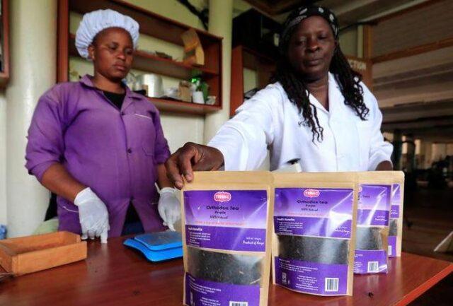 Top Health Benefits of Purple Tea, Uses of Purple Tea